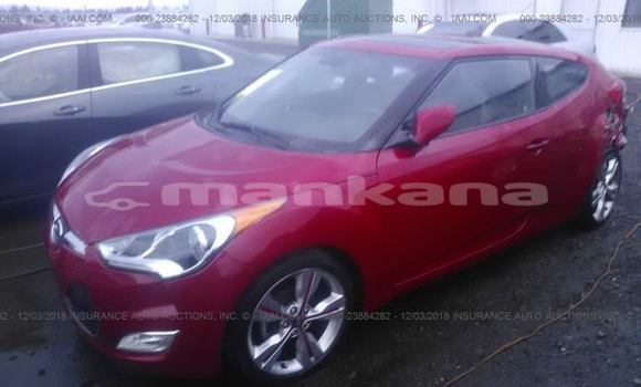 Buy Used Hyundai Veloster Red Car in Tbilisi in Tbilisi