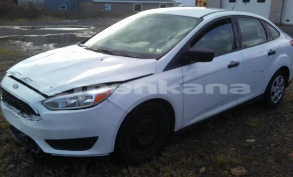 Buy Used Ford Focus White Car in Tbilisi in Tbilisi