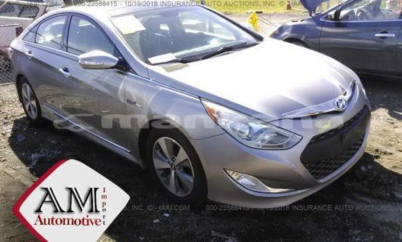 Buy Used Hyundai Sonata Silver Car in Tbilisi in Tbilisi