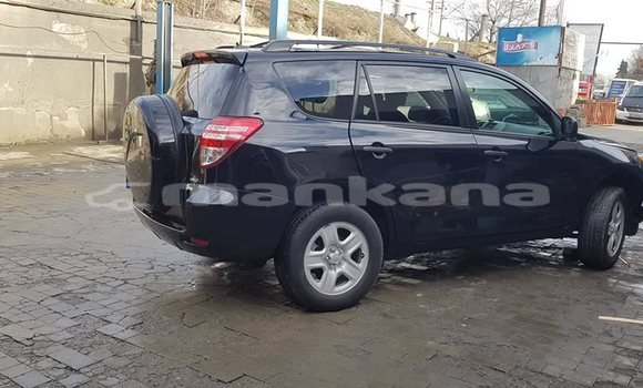 Buy Used Toyota RAV 4 Black Car in Tbilisi in Tbilisi