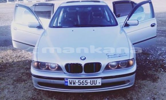 Buy Used BMW 3–Series Silver Car in Tbilisi in Tbilisi