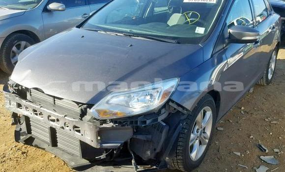 Buy Used Ford Focus Other Car in Tbilisi in Tbilisi