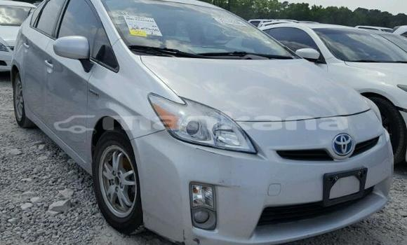 Buy Used Toyota Prius Silver Car in Tbilisi in Tbilisi