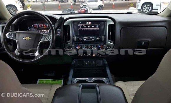 Buy Import Chevrolet Silverado White Car in Import - Dubai in Abhasia