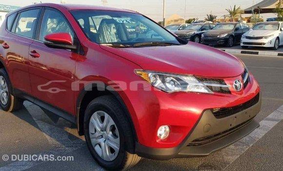 Buy Import Toyota RAV 4 Red Car in Import - Dubai in Abhasia