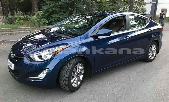 Buy Used Hyundai Elantra Blue Car in Tbilisi in Tbilisi