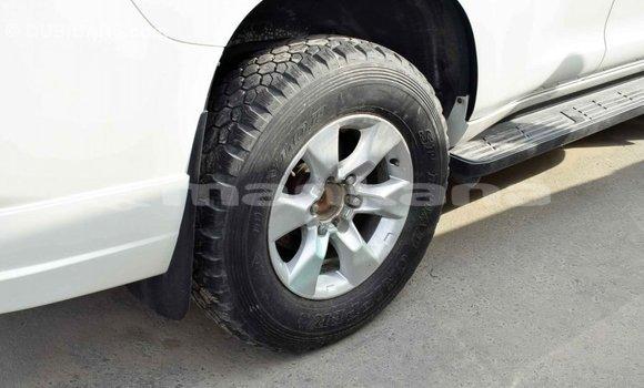 Buy Import Toyota Prado White Car in Import - Dubai in Abhasia