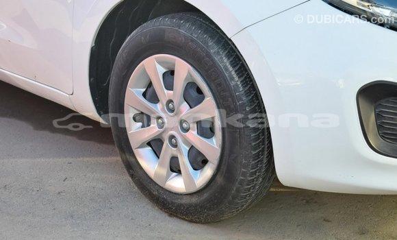 Buy Import Kia Rio White Car in Import - Dubai in Abhasia