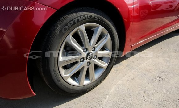 Buy Import Hyundai Elantra Red Car in Import - Dubai in Abhasia