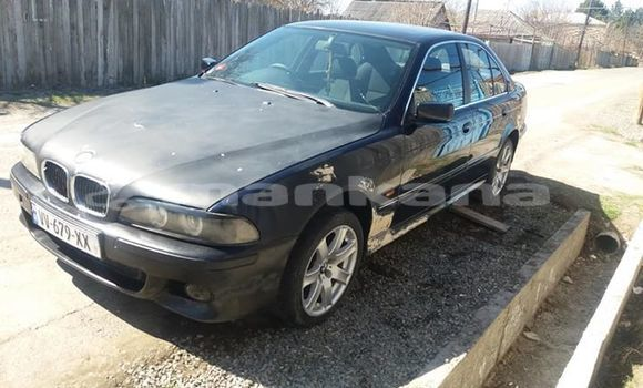 Buy Used BMW 5–Series Black Car in Tbilisi in Tbilisi