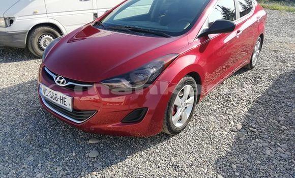 Buy Used Hyundai Elantra Red Car in Kutaisi in Imereti