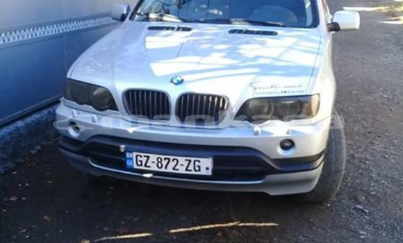 Buy Used BMW X5 Silver Car in Tbilisi in Tbilisi