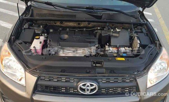 Buy Import Toyota HiAce Brown Truck in Import - Dubai in Abhasia