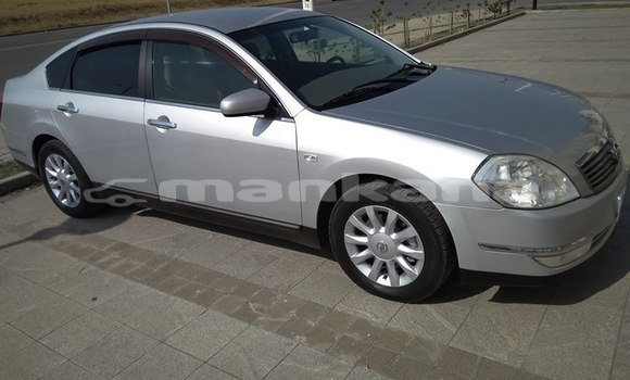 Buy Used Nissan Teana Silver Car in Tbilisi in Tbilisi