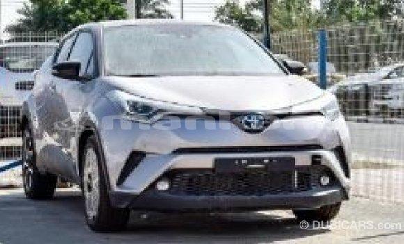 Buy Import Toyota C-HR Other Car in Import - Dubai in Abhasia