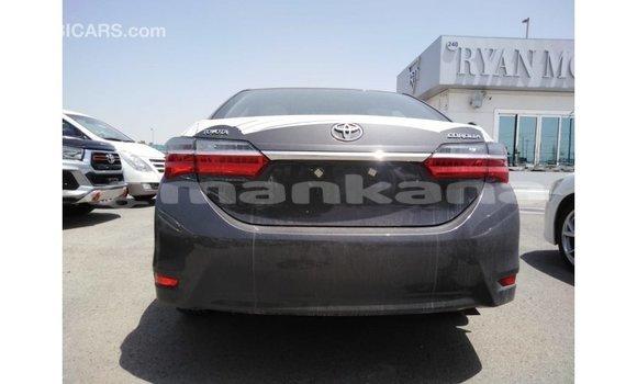 Buy Import Toyota Corolla Other Car in Import - Dubai in Abhasia