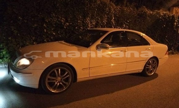 Buy Used Mercedes-Benz E-klasse White Car in Tbilisi in Tbilisi