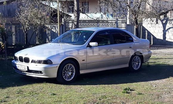 Buy Used BMW 5–Series Silver Car in Kutaisi in Imereti